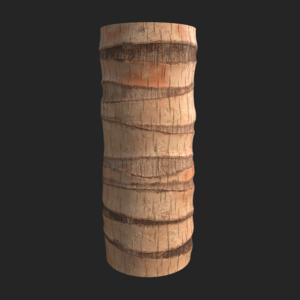 Palmtree 01