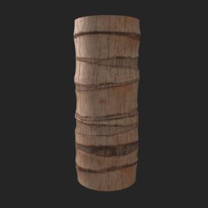 Palmtree 03