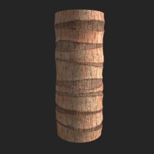 Palmtree 07