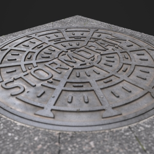 Manhole cover wip05.5