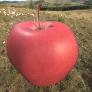 Apple honeycrisp 1