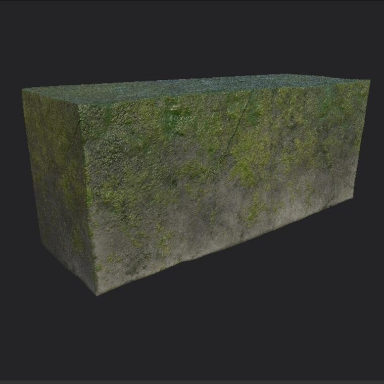 Roca con moho