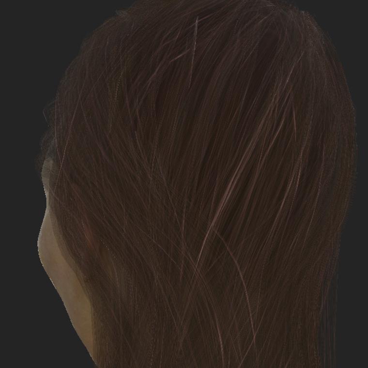 Hairpainter