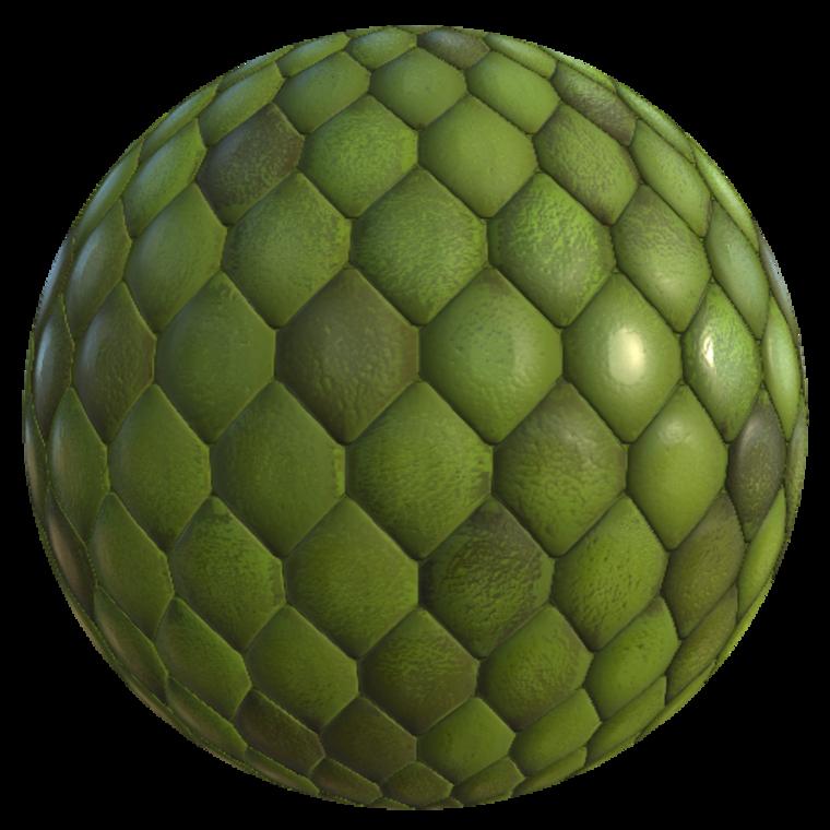 Gecko skin