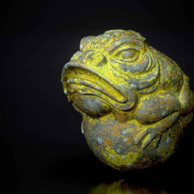Lichen toad 3