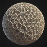 Wsd 03 nikoladamjanov coral