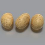 Potato1