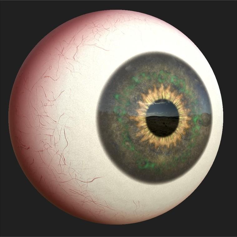 Substance player 2019.1   eyeball.sbsar