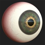 Substance player 2019.1   eyeball.sbsar