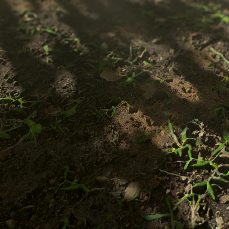 Dirt ground 02