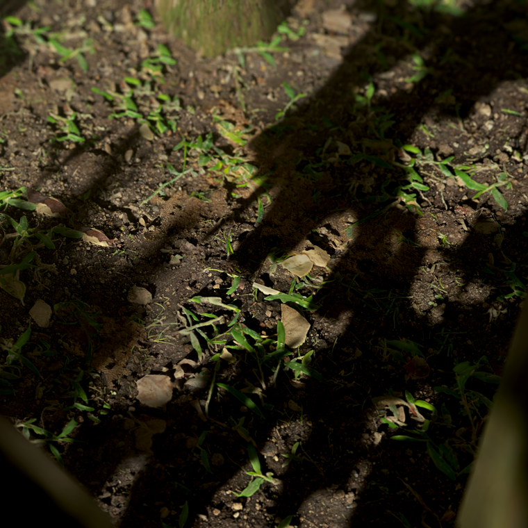Dirt ground 03