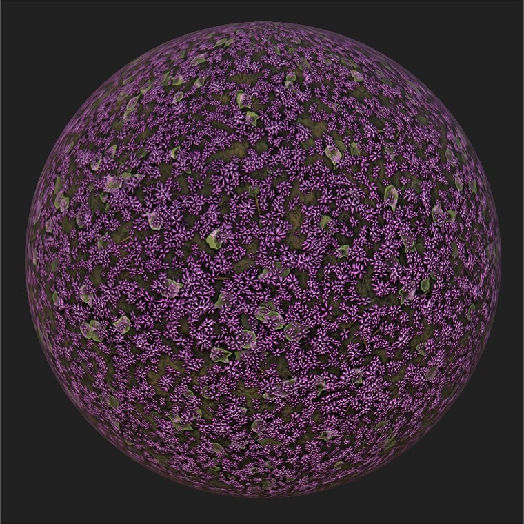 Substance player   flowers.sbsar